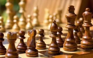 Букмекеры поддерживают федерацию шахмат РФ